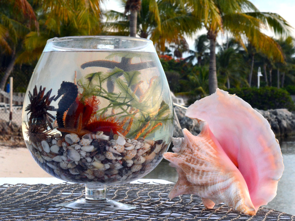 sea life centerpieces